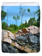 Trees Above The Pink And Grey Rock  Duvet Cover