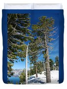 Trees And Snag At Crater Lake Duvet Cover