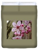 Trees Art Prints Canvas Pink Blossoms Spring Blue Sky Baslee Troutman Duvet Cover