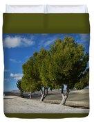 Trees In January Duvet Cover by Jo Ann
