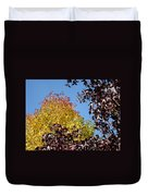 Trees Landscape Blue Sky Art Prints Fall Leaves Duvet Cover