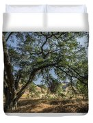 Trees Of The Forest 4 Duvet Cover