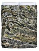 Trees Of Ziarat Duvet Cover