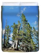 Trees On The Edge 1 Duvet Cover