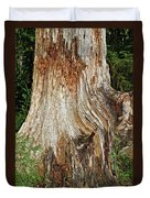 Trees On The Trails - Olympic National Park Wa Duvet Cover
