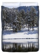 Trees Reflecting In Duck Pond In Colorado Snow Duvet Cover