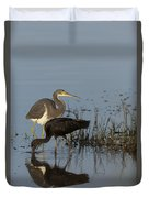Tri-colored Heron And Glossy Ibis Duvet Cover