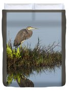 Tri-colored Heron And Reflection Duvet Cover