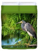 Tri-colored Heron At Sunset  Duvet Cover