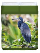 Tri-colored Heron On A Branch  Duvet Cover