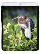 Tri-colored Heron On Guard  Duvet Cover