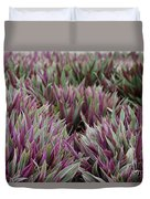 Tricolor Moses In The Cradle Plant Duvet Cover