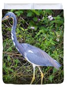 Tricolored Heron Hunting Duvet Cover
