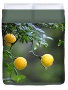 Trifoliate Orange Duvet Cover