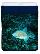 Triggerfish Swimming Over Coral Reef Duvet Cover