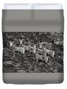 Trophy Rams Duvet Cover