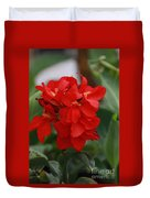 Tropical Red Canna Lilly Duvet Cover