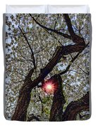 Trunk Of A Cherry Tree Blooming With White Flowers Duvet Cover