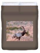 Tule Elk Bull In Grassland Meadow Duvet Cover