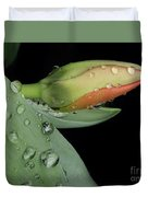 Tulip Bud Duvet Cover