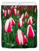 Tulips 7 Duvet Cover