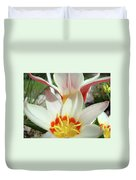 Tulips Flowers Artwork 1 Tulip Flower Art Prints Spring Floral Art White Tulips Garden Duvet Cover
