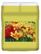 Tulips Glorious Tulip Monsella Duvet Cover by Debra  Miller