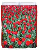 Tulips In Kristiansund, Norway Duvet Cover