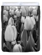 Tulips 4 Duvet Cover