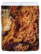 Turkey Tail Mushrooms  Duvet Cover