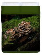 Turkey Tail Duvet Cover