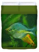 Turquoise Rainbowfish 2 Duvet Cover