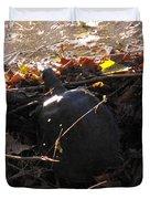 Turtle At Deer Creek Duvet Cover