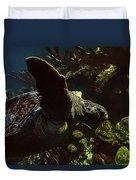 Turtle Wave Duvet Cover