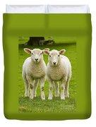 Twin Lambs Duvet Cover by Meirion Matthias