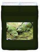 Two Alligators Duvet Cover