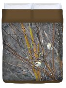 Two American Goldfinch Duvet Cover