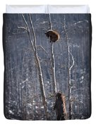 Two Bears Up A Tree Duvet Cover
