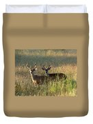Two Black-tailed Deer In Meadow Grass Duvet Cover