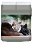 Two Cats  Sleeping  Duvet Cover