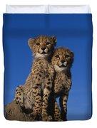 Two Cheetah Cubs Duvet Cover