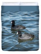 Two Coots Duvet Cover