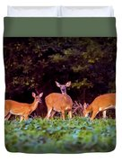 Two Doe And One Buck Duvet Cover