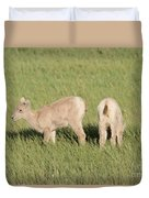 Two Ewes In The Badlands Duvet Cover
