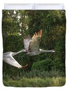 Two Florida Sandhill Cranes In Flight Duvet Cover