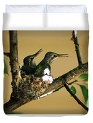 Two Hummingbird Babies In A Nest 5 Duvet Cover