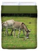 Two Jerusalem Donkeys In A Field Duvet Cover