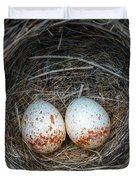 Two Junco Eggs In The Nest Duvet Cover