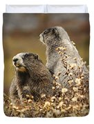 Two Marmots Duvet Cover