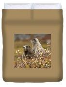 Two Marmots Duvet Cover